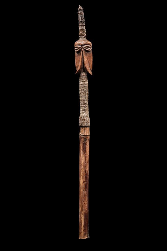 Pointe de lance des Iles Vanuatu